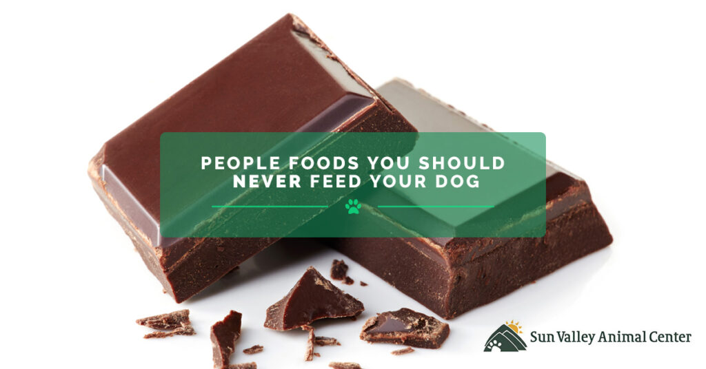 People-Foods-You-Should-Never-Feed-Your-Dog-59fb4311aa2e4